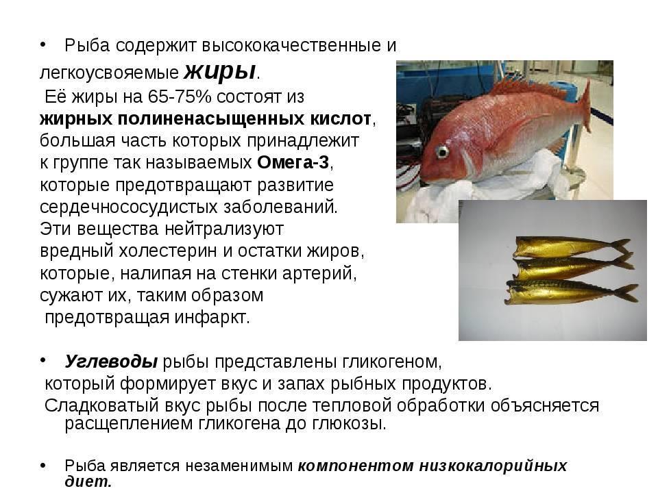 Глава iii. производство охлажденной и подмороженной рыбы [1986 быкова в.м., белова з.и. - справочник по холодильной обработке рыбы]