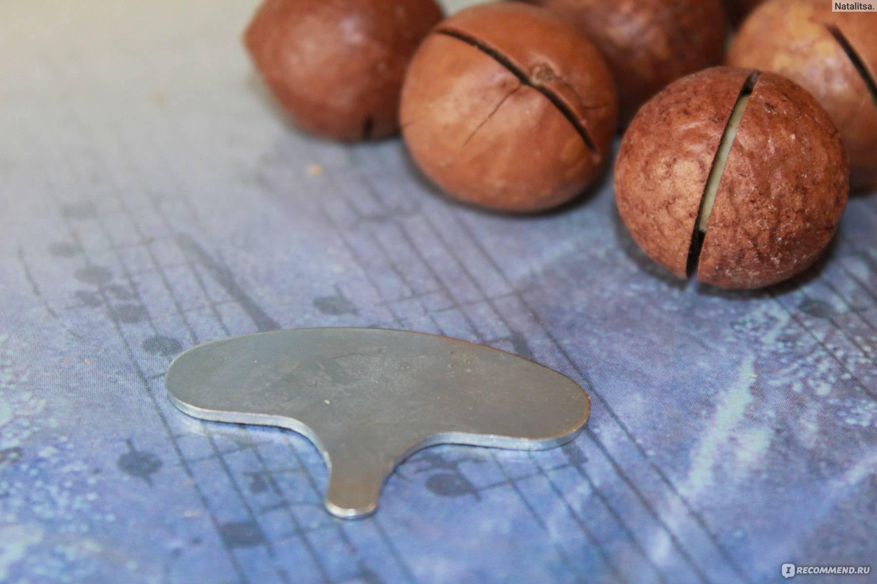 Орех макадамия и надрез специальным ключом
