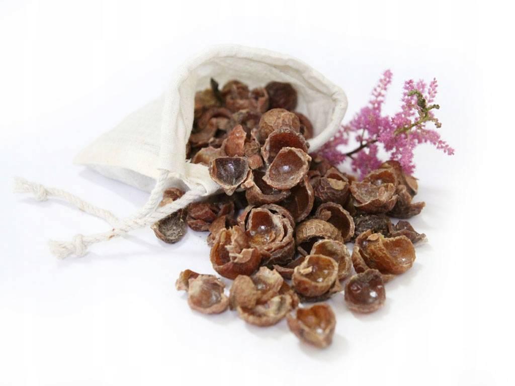 Мыльные орехи – натуральное моющее средство