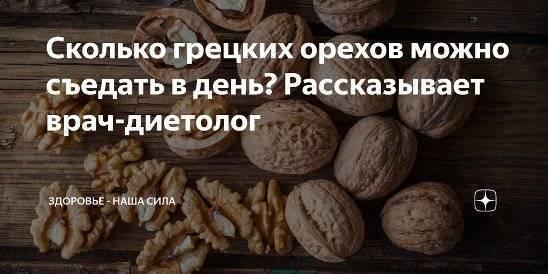 Сколько грецких орехов в день нужно съедать? нормы употребления продукта