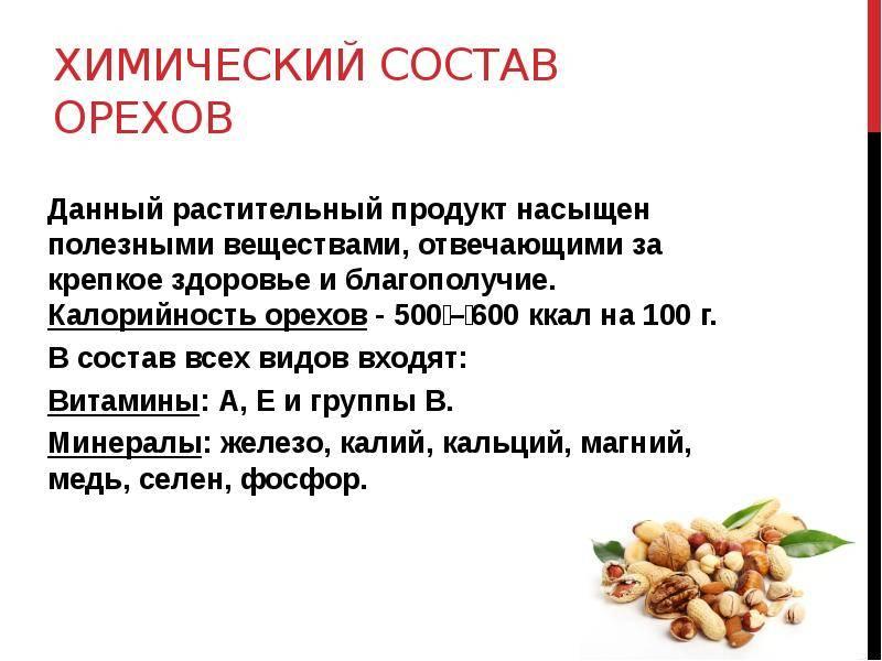 Кедровый орех — химический состав, пищевая ценность, бжу