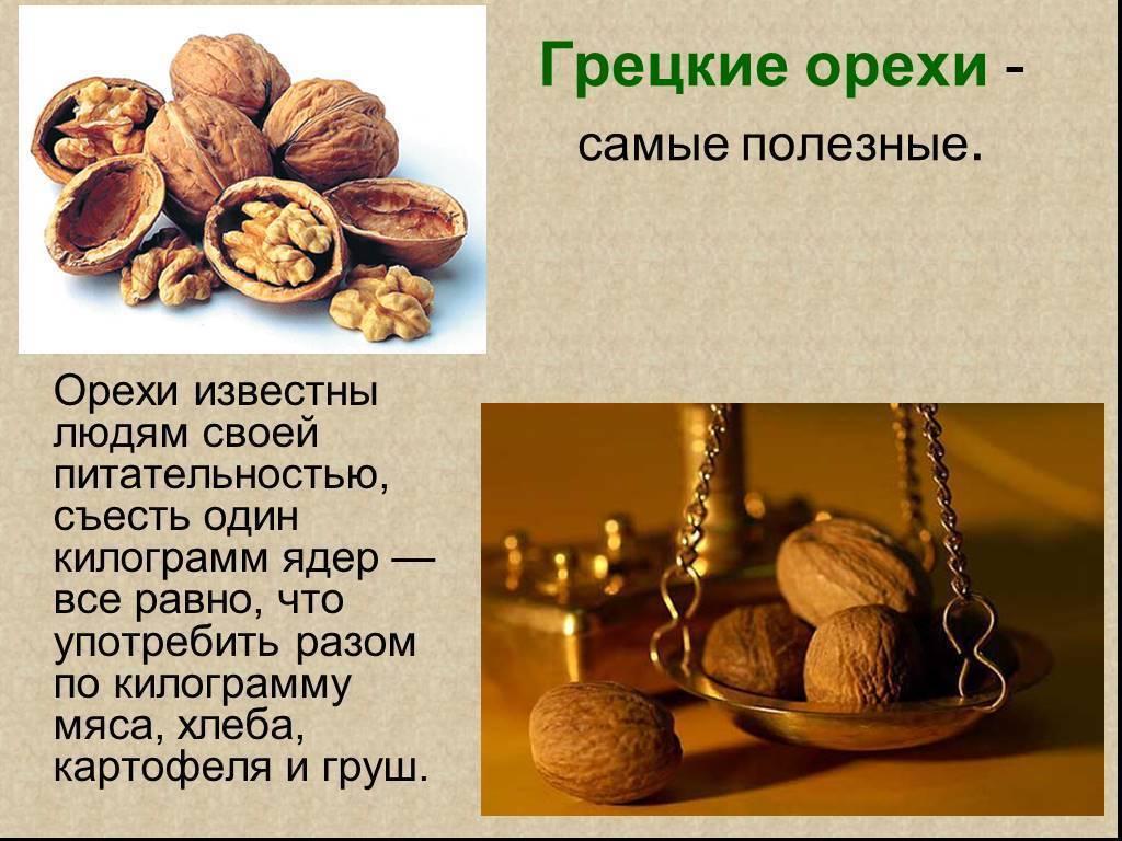 Есть, но не переедать. за что мы любим орехи - здоровье с headinsider
