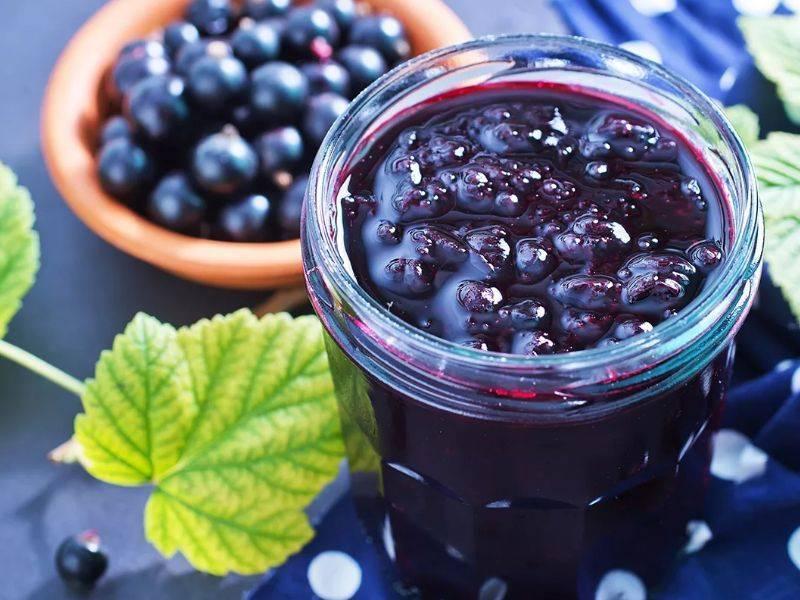 Джем из красной смородины - 9 простых рецептов на зиму с фото пошагово
