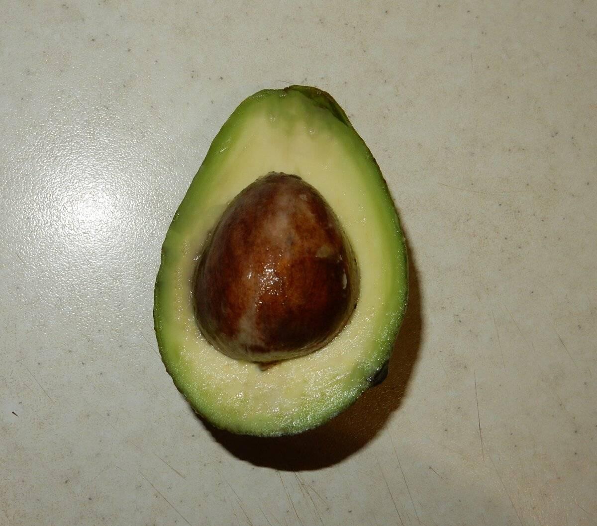 Что можно сделать с косточкой авокадо