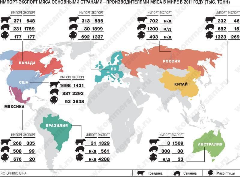 Как растет арахис: в каких странах произрастает