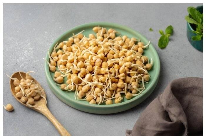 Польза и вред пророщенной пшеницы, советы врачей по использованию зерен, полезные свойства ростков и противопоказания