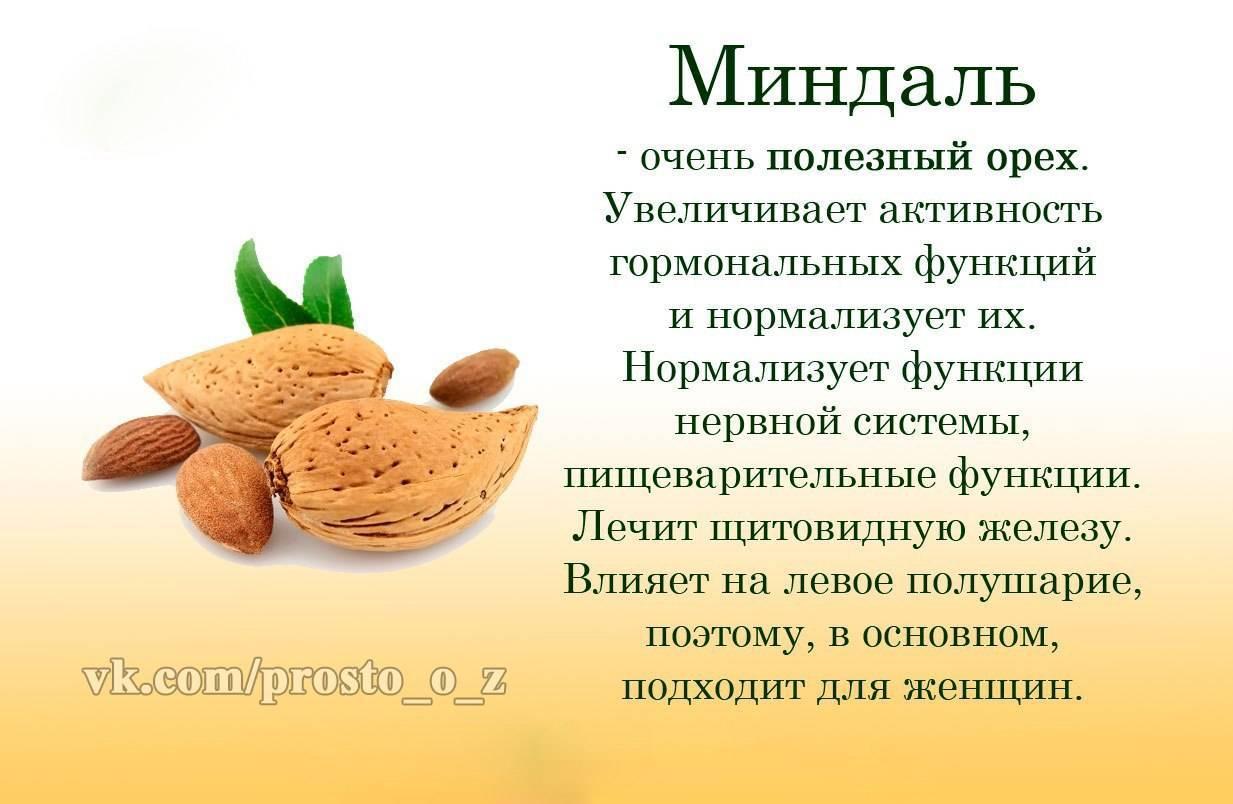 Почему нельзя есть много миндаля: что будет, если кушать каждый день, можно ли отравиться, и симптомы отравления и смертельная доза горьких орехов для человека