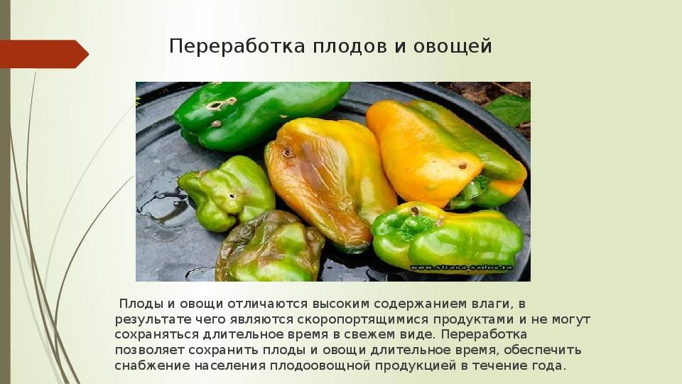 Хранение свежих плодов и овощей