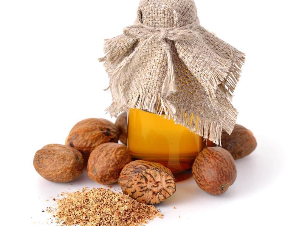Мускатный орех: полезные свойства и противопоказания, как употреблять | zaslonovgrad.ru