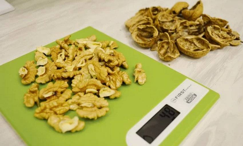 Мнение экспертов о калорийности и составе грецкого ореха