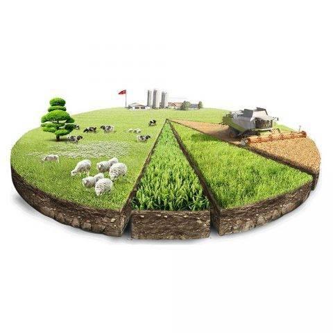 Категории земель и виды разрешённого использования: что это такое?