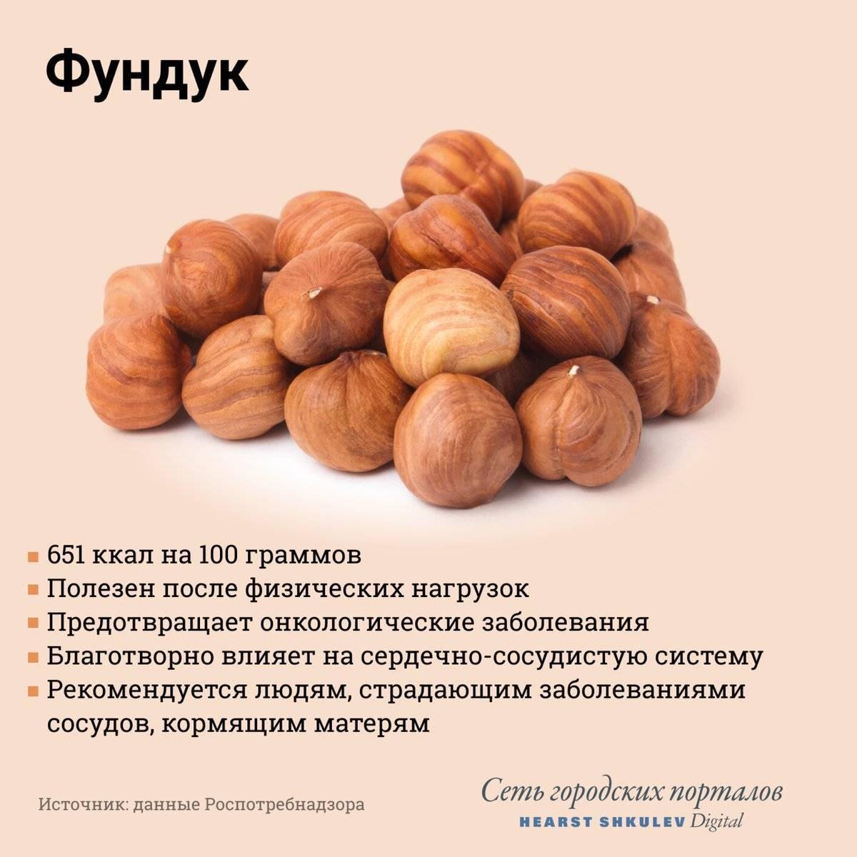 Снятся орехи фундук: толкование по сонникам