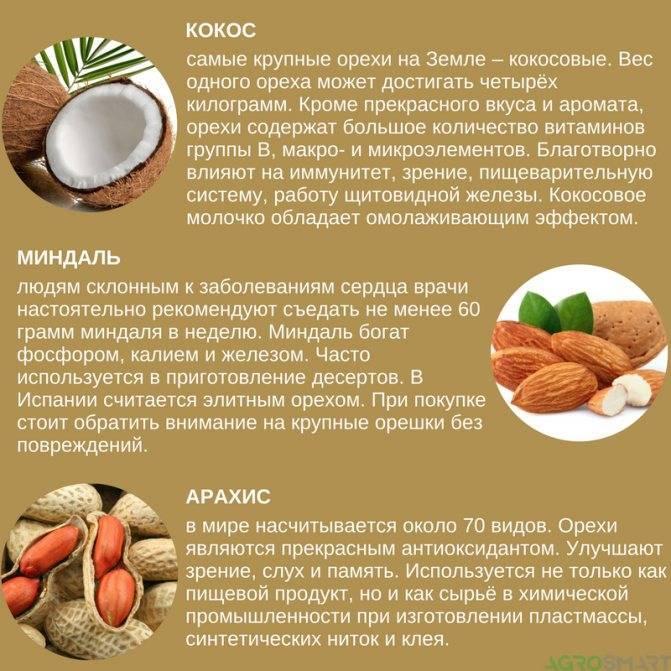 Продукты при гастрите: список запрещенных и разрешенных продуктов питания