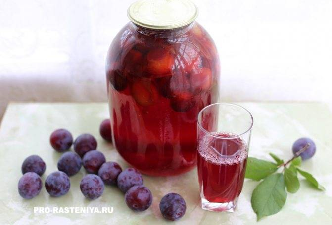 Простые пошаговые рецепты как сделать домашнее вино из забродившего компота