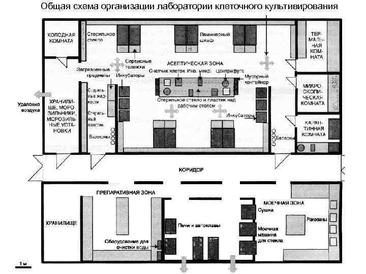 Оснащение микробиологической лаборатории – купить оборудование в москве