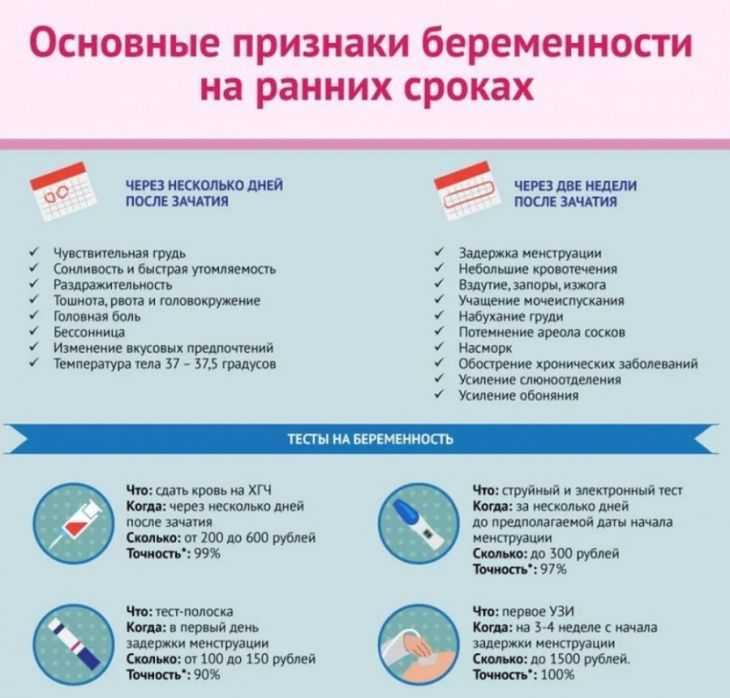 ᐉ какие орехи надо есть беременным. полезные и вредные орехи для беременных - ➡ sp-kupavna.ru