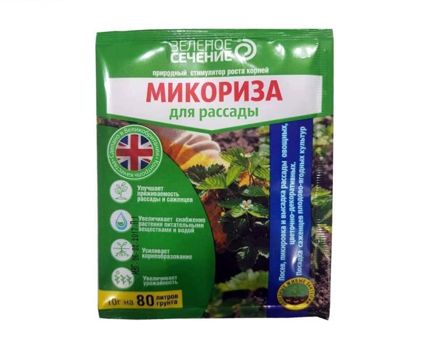 27 микрофлора почвы в питании растений. микориза.