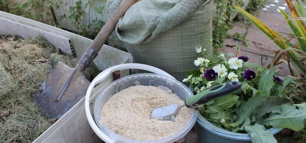 Луковая шелуха для огорода и сада: правильное применение удобрения