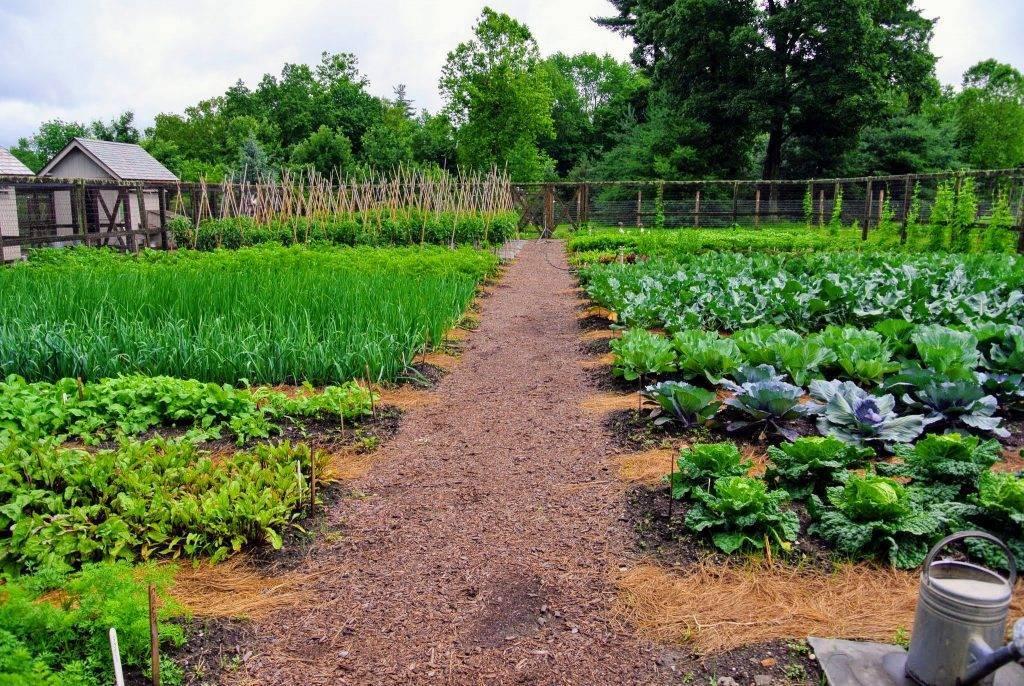 Участки для садоводства. какие земли можно использовать?