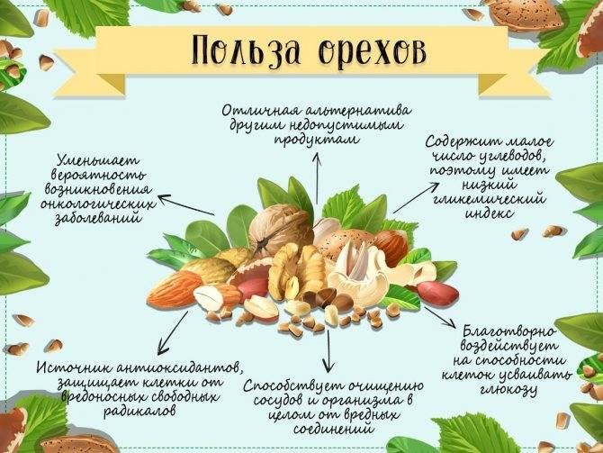 Какие орехи можно при сахарном диабете (диабетикам) 1 и 2 типа?