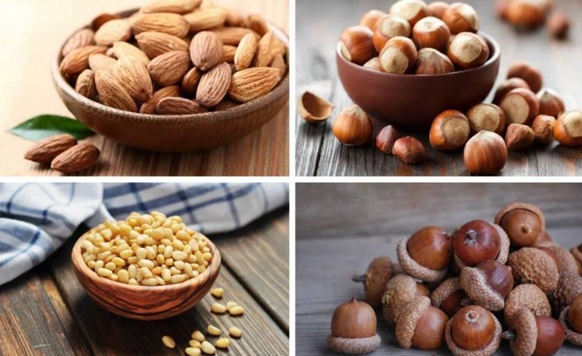 Можно ли употреблять орехи при запоре - медицинский портал: все о здоровье человека, клиники, болезни, врачи - medportal.md