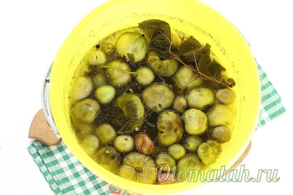 Рецепты засолки зелёных помидоров в ведре и полезные советы