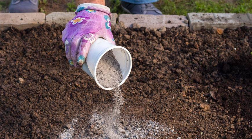 Шелуха семечек, как удобрение для огорода. полезные свойства лузги   зелёный сад