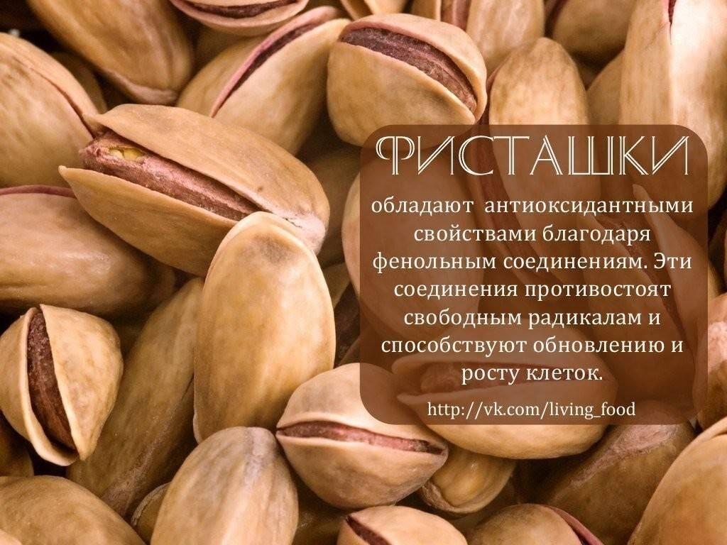 Фисташки: польза и вред для организма мужчин, женщин, детей, при беременности | народная медицина | dlja-pohudenija.ru