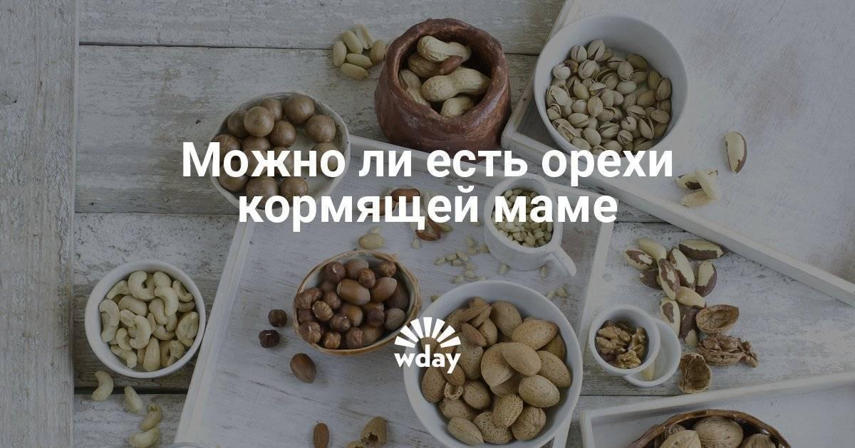 Можно ли при грудном вскармливании орехи (грецкие, кедровые или другие), какие из них полезны кормящим мамам
