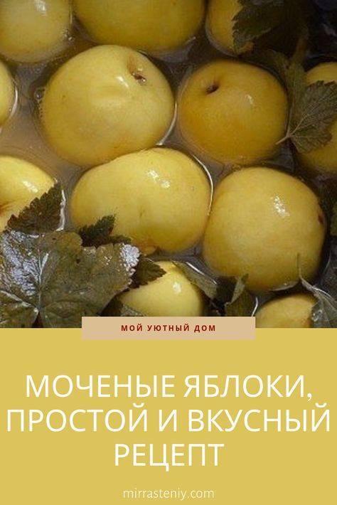 Моченые яблоки: рецепт в домашних условиях антоновки