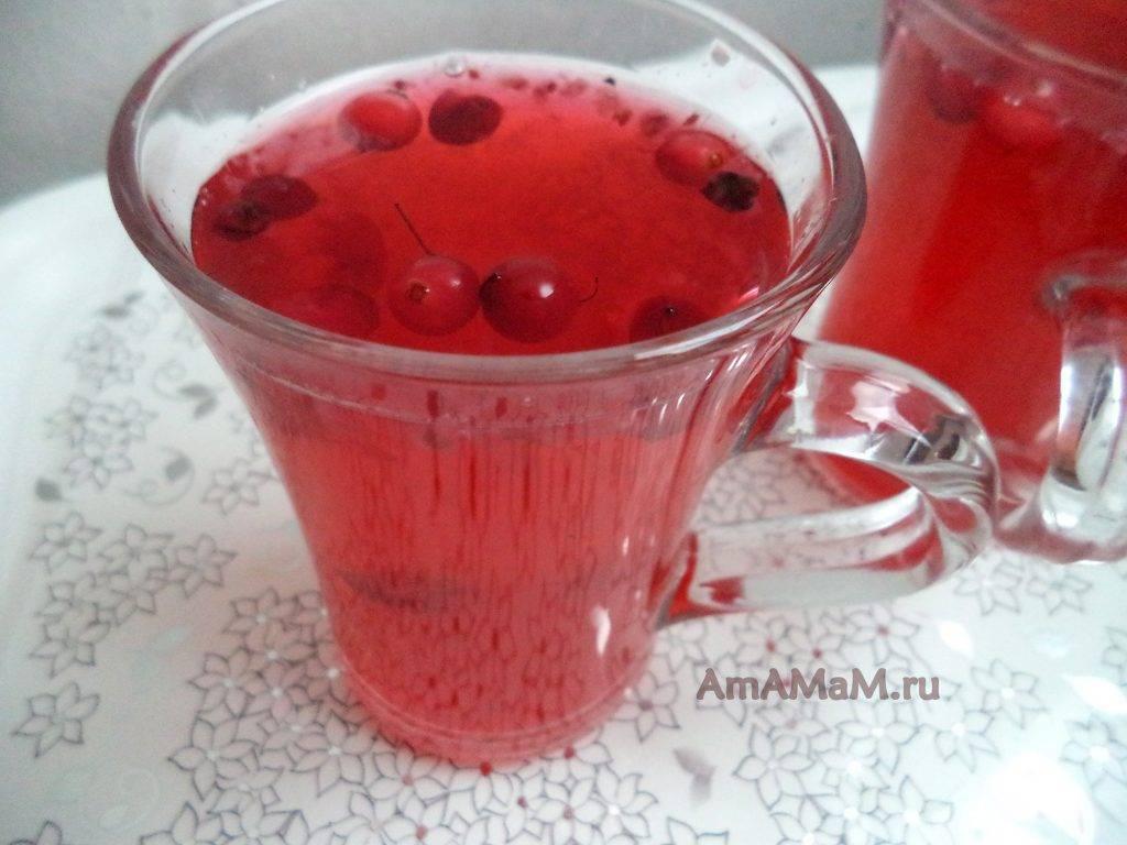 Сколько варить компот из клюквы. компот из клюквы - вкусные и оригинальные рецепты полезного витаминного напитка