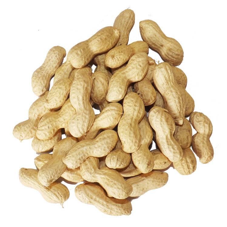 В чем особенность и полезность жаренного арахиса, а также технология его жарки в домашних условиях