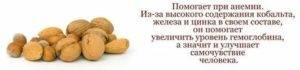 Питание при геморрое: 15 полезных при геморрое продуктов