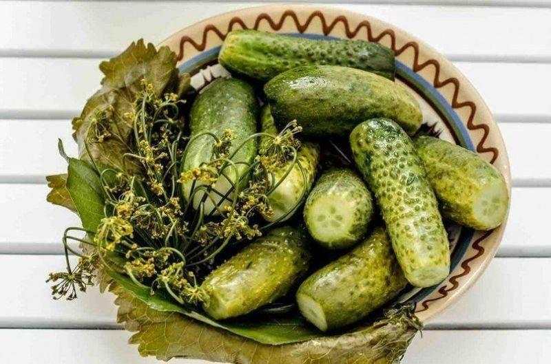 Хрустящие соленые огурцы в банках: 5 супер вкусных рецептов на зиму