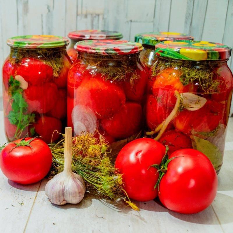 Простая засолка помидор – фото-рецепт и его 10 вариаций