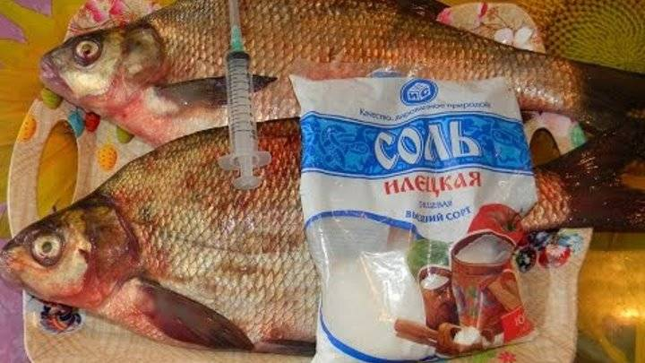 Как засолить рыбу в домашних условиях - 10 фото рецептов + видео