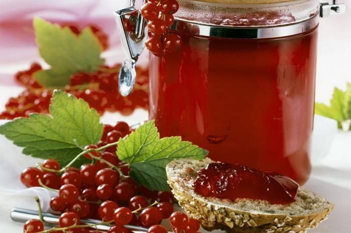 Джем из красной смородины: рецепт на зиму простой, с желирующим сахаром, желатином, пектином, без косточек. как вкусно приготовить джем из красной и черной, белой смородины и малины, крыжовника, арбуза, вишни, яблок, в духовке, мультиварке на зиму: рецепт
