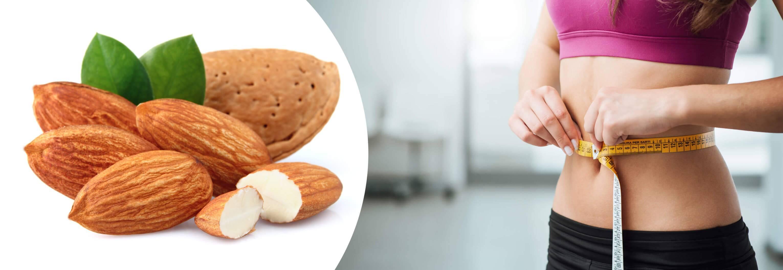 Польза орехов для организма женщины: полезные свойства и противопоказания, влияние на здоровье после 50 лет, а также какие самые лучшие в мире и что из них готовят?