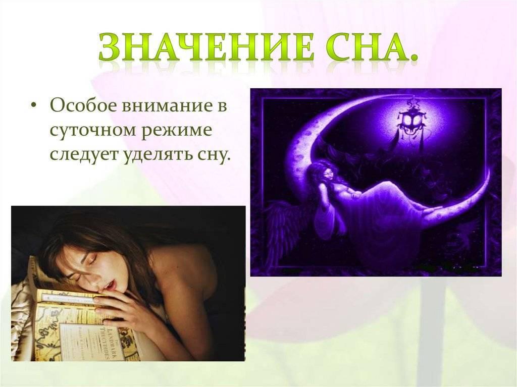 «сонник орех приснился, к чему снится во сне орех»