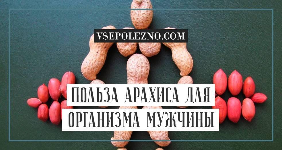 Арахис: польза и вред для организма человека