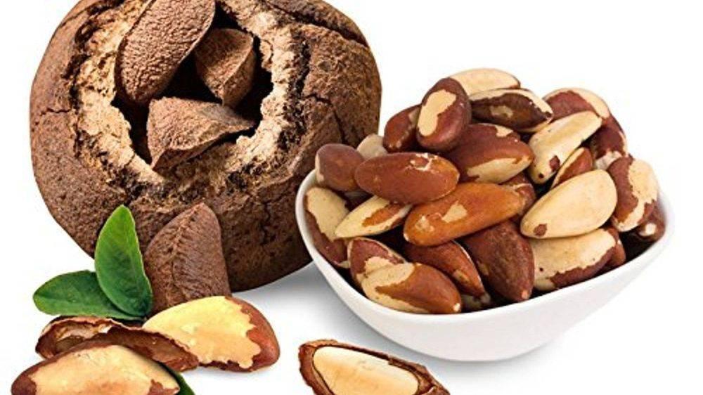 Лечебные свойства и противопоказания бразильского ореха
