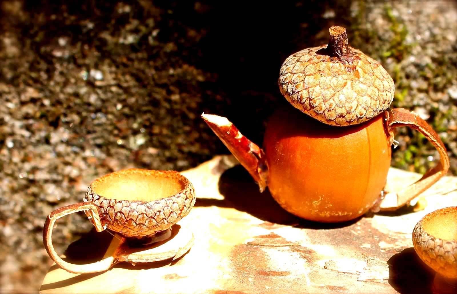 Можно ли приготовить кофе из желудей, польза и вред напитка, рецепты. польза и вред кофе из желудей, рецепт приготовления