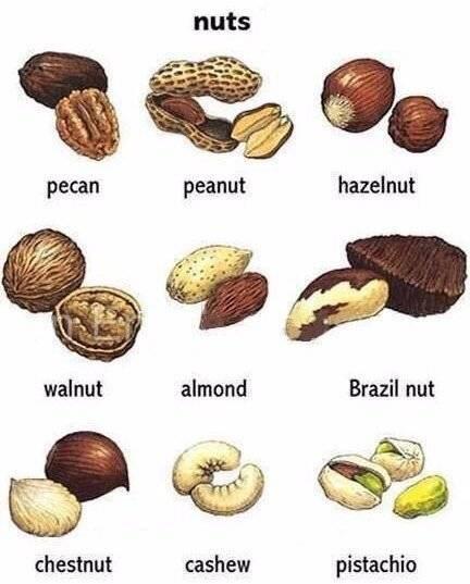 Как называется плоский орех. фото, названия и виды орехов. какая польза от орехов для организма