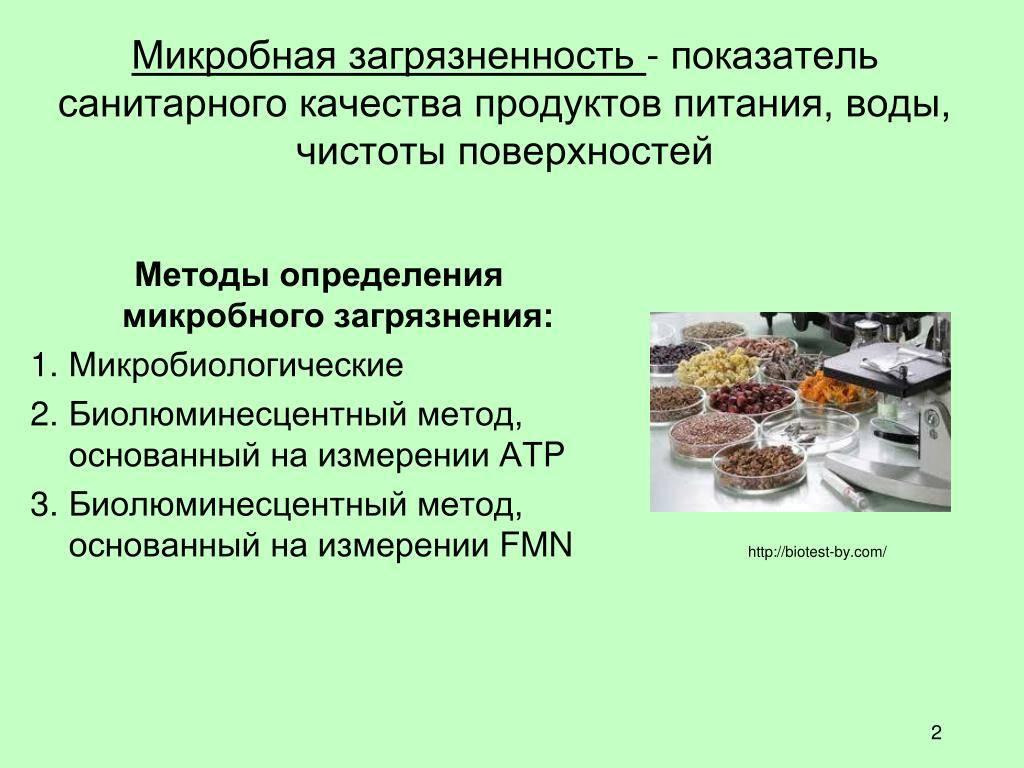 Консервирование продуктов питания: 4 способа