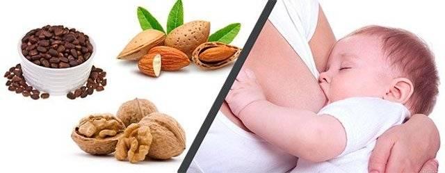 Какие орехи можно есть при грудном вскармливании. как вводить в рацион. польза или вред орехов при кормлении ребенка