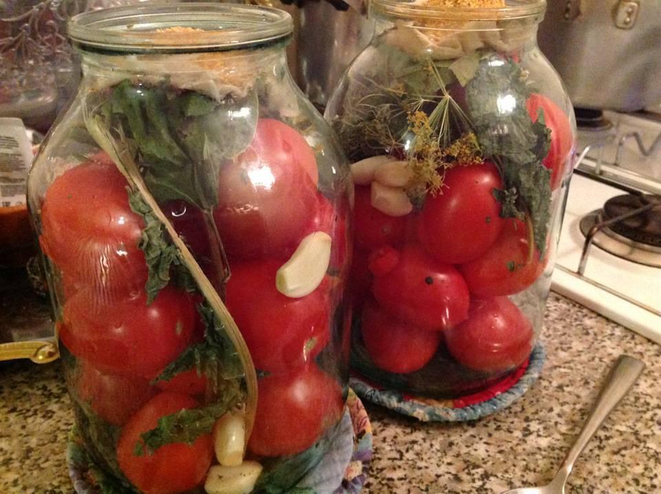 Как засолить помидоры на зиму в банке, в кастрюле, в ведре, бочке или кадушке