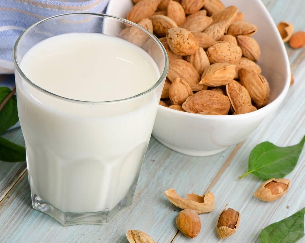 Растительное молоко в домашних условиях: рецепты из разных видов, польза и вред