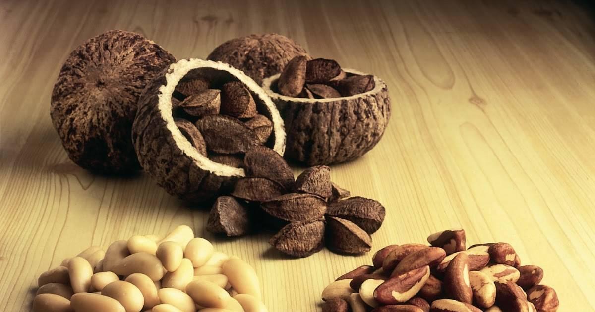 Бразильский орех: польза и вред для организма (мужчин)
