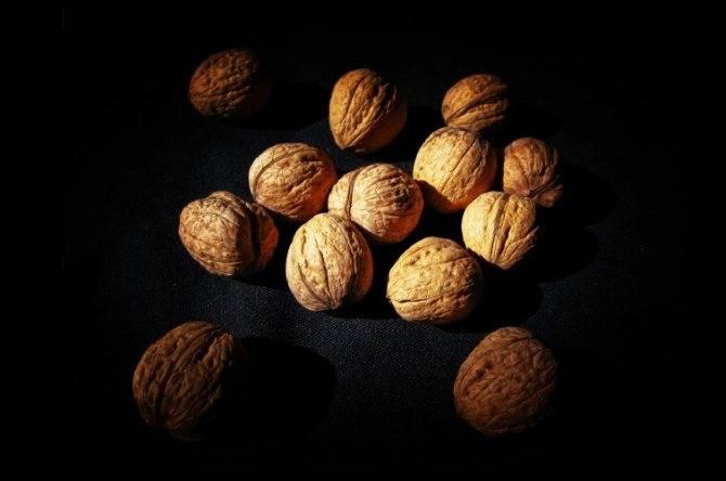 Можно ли кормящей матери есть грецкие орехи при грудном вскармливании