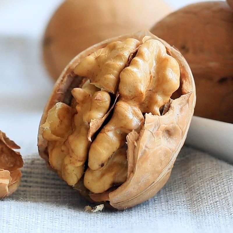 Грецкий орех: польза и вред применения ядер, перегородок, листьев и скорлупы